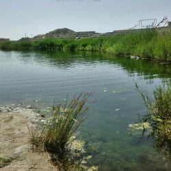 چشمه روستای کمال اباد حاشیه کویر مرکزی  جدا یه معجزس تو  این صحرای خشک وسوزان ابی گوارا از این چشمه در جریانه