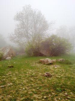 ارتفاعات شاهاندشت آمل