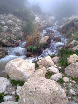 ارتفاعات شاهاندشت - آمل