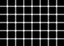 دایره ها سفیدند یا سیاه ؟!