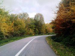 خزان جنگل های زیبای شمال....