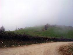 در خم جاده تو را گم کردم / نا امیدانه در اعماق مه کوهستان در پی ات می گردم....