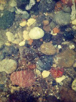 سنگ های زیبای لب دریا photo by:Naser @دریا @ زیبا @شمال @چالوس @طبیعت  @hd @sea @iran @naser