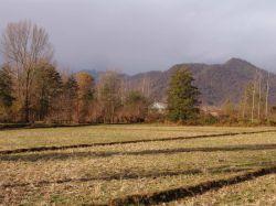گیلان,شهرستان صومعه سرا,روستای تطف,پاییز89 عکس:بهرام حاجی زاده