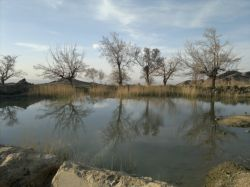 برکه ای زیبا ... حاشیه کویر لوط -ابادی کوشکو حوالی ابوزیدآباد