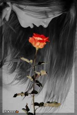 بوی تو رو از گل های سرخ میجویم ... عطر خاطراتت هنوز در کوچه پس کوچه قلبم به مشام میرسد ...