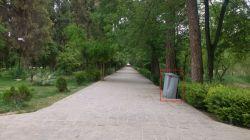 باغ ارم شیراز- این چیه آخه تو باغ به این قشنگی..؟؟؟