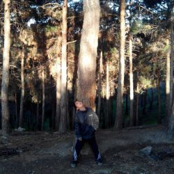 داداشم در جنگل لویزان
