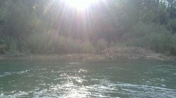 زاینده رود