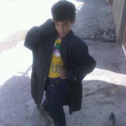 سیدهانی حسینی