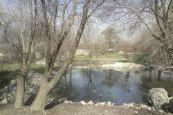 چشمه فتح آباد،کازرون