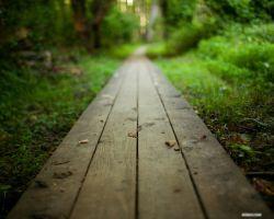 سکوت چه زیباست وقتی تمام حرفها از توصیف مهربانیت عاجزند.
