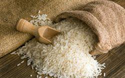 برنج چگونه بدست می آید و چه تفاوت هایی با هم دارند برنج از گیاهان تک لپه می باشد و در مناطق گرم ، پرآب و مرطوب میروید و پس از گندم ، دومین غلات مهم در دنیا به حساب می آید .