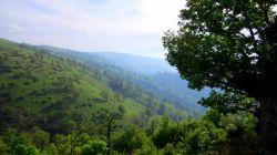 ارتفاعات جنگل ابر شاهرود