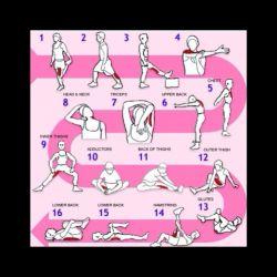 برنامه کششی واسه بعد از انجام ورزش