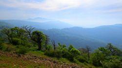 ارتفاعات جنگل ابر_ شاهرود