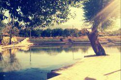 چشمه رسول الله ـ شهرستان اقلید