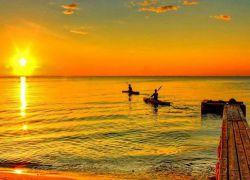 افق تاریـک، دنیا تـنگ، نومیدی توان فرساست، می دانم! ولیکن ره سپردن در سیاهی، رو به سوی روشنی زیباست! #فریدون مشیری