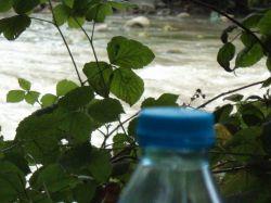 بطری کوچیکی که برای طبیعت ی سمه