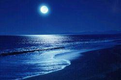 شب سردى ست هوا منتظر باران است وقت خواب است، دلم پیش تو سرگردان است شب بخیر.... اى نفست شرح پریشانى من... ماه پیشانى من.... دلبر بارانى من...