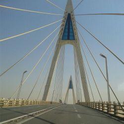 پل غدیر(کابلی)اهواز ۱۳۹۳/۰۷/۱۸