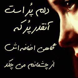 چقدر جای شادیهای بی دلیل در دلم خالیست...