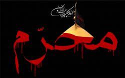 طراح: محمدرضا بابائی #فتوشاپ