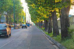 بلوار جاده کندوان - چالوس - مازندران ، ایران  اردیبهشت ۹۳  چقدر به این درخت ها نیاز داره چالوس , ولی کسی به فکر همچین منظرههایی نیست . . . ! ! !
