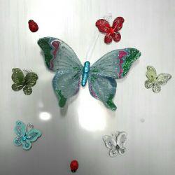 عاشق پروانه ام