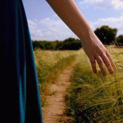 از بذر خیالت گندمزار می شوم , فصل درو ... دریغ و درد , سفره ی تو بی نان , سیلوی من پر از شعر عاشقانه !!!