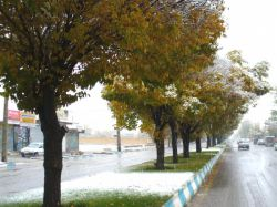 آوار زمستان بر پاییز ..داران 93