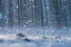 با توام ای حضرت باران ....ظهر روز دهم کجا بودی؟؟؟؟.....کامنت لطفا