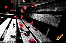 کوچیکتر که بودم فکر میکردم تنهایی یعنی وقتایی که هیچکسی خونه نیست...