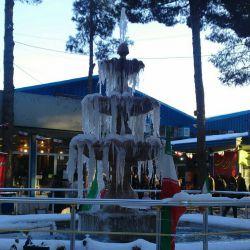 اینم یه حوض کوچیک یکی از پارکهای شهر خودم عکس زمستان92
