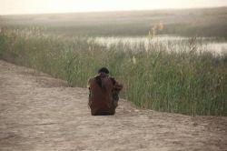انشاالله تادوساعت دیگر عازم سرزمین نور هستیم دعاکنید ازپیش شهدا روسفید برگردیم (یازهرا)