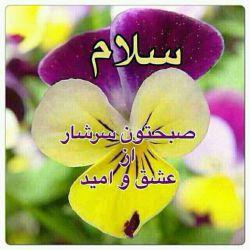 سلام ب همه عزیزانم صبحتون بخیر و شادی امیدوارم روزتون رو با انرژی آغاز کرده باشید