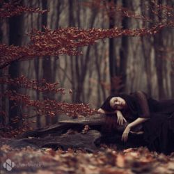 دیدی غزلی سرود ? عاشق شده بود ... انگار خودش نبود ... افتاد , شکست , زیر باران پوسید ... آدم که نکشته بود ... عاشق شده بود ...