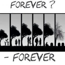 عشق تو تگ کن  #عشق #عشقم #عشقت #همسر #دختر #پسر #forever #love