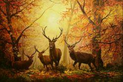 سلام به همگی....یکی دیگه از نقاشیام.......: )