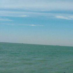 دریای زیبا و آرامش بخش استان بوشهر (خودم این تصویر رو با تلفن همراه گرفتم )