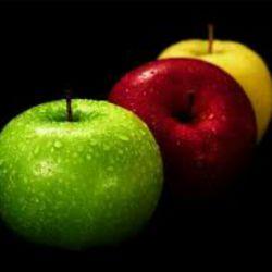 """""""یک هایکو"""" سیب کاغذی و کرم های آتش باز زمستان آمد...  از:سارا حسینی(آیسار)"""