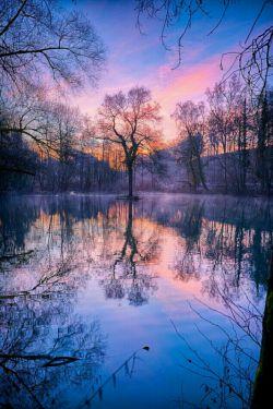 عشق راباید از درخت آموخت که اگر از زمین جدایش کنی می خشکد