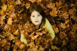 آنهایی که رنگ پریدگی پاییز را دوست ندارند . نمی فهمند که پاییز همان بهار است که عاشق شده است …
