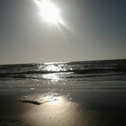 ساحل بندر گناوه