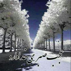 خدایا گناهان مارابه حق تشنه کربلا سروروسالارشهیدان امام حسین(ع) ببخش.الهی آمین.