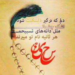 سلام بر حسین نور چشمان فاطمه الزهرا وعزیزانش..