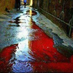 جوی خون شیعیان...