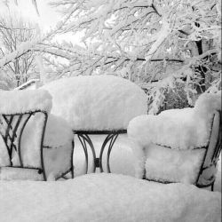 دلم یک زمستان سخت می خواهد یک برف یک کولاک به وسعت تاریخ که ببارد و ببارد وببارد تا تمام راهها بسته شوند وتو چاره ای جز ماندن نداشته باشی وبمانی تا بهار و چه بهاری بشود آن زمستان..!!