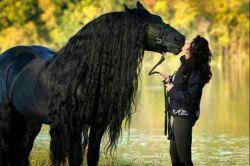 اول به نام عشق . . . دوم به نام تو . . . سوم به یاد مرگ . . . بر لوح شیشه ای قلبت بنویس : یا تو و عشق ، یا من و مرگ! زمان به من آموخت كه دست دادن معنی رفاقت نیست .... بوسیدن قول ماندن نیست ..... و عشق ورزیدن ضمانت تنها نشدن نیست !