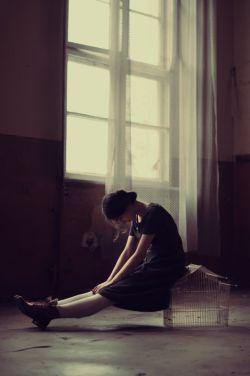 وما خانواده ای بودیم ..  شکست خورده در عشق , خواهرم عروسکهایش را گم کرد , بابا .. آنقدر سرش شلوغ بود .. که گریه های مادرم را نمی دید , ومن .. مدتی هست که تو , بی خیالم شده ای